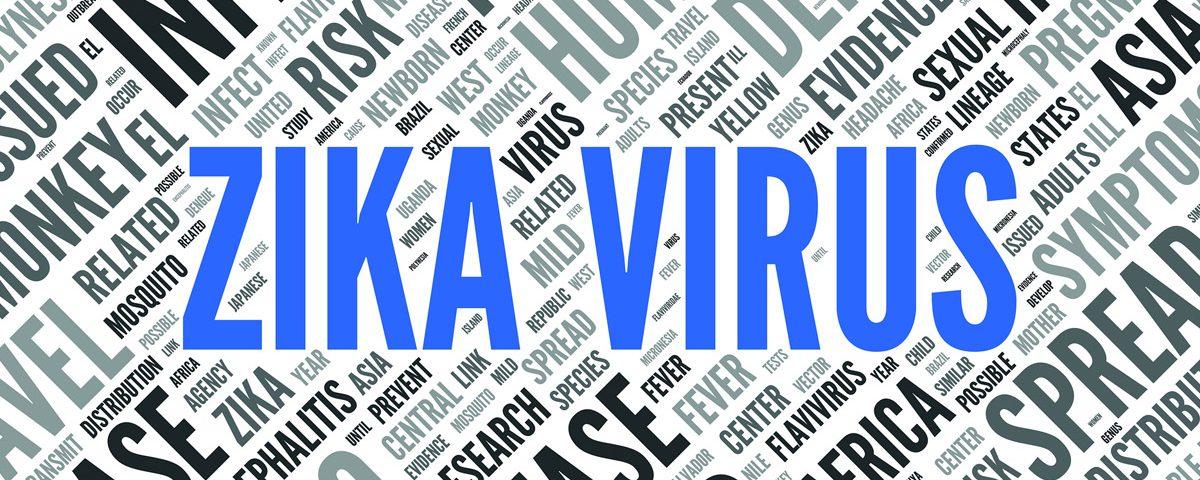 the-zika-virus